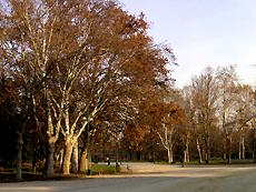 イタリアのミラノの公園